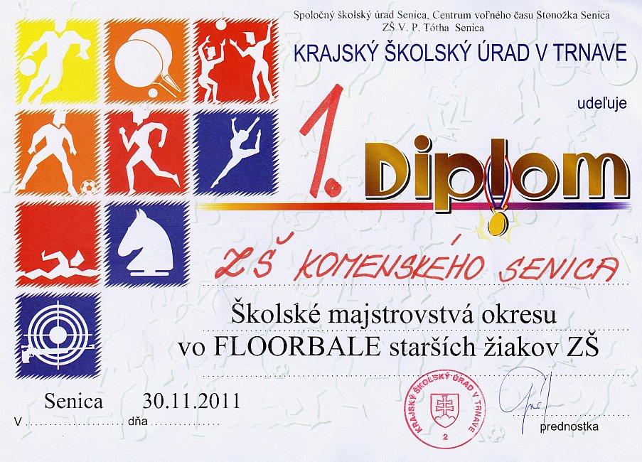 diplom-111130-floorbal.jpg