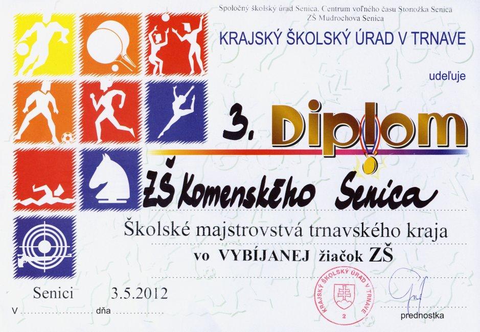 diplom-120503-vybijana.jpg