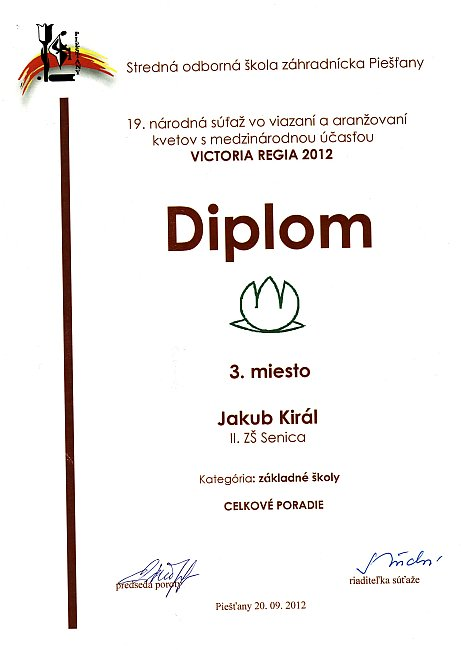 diplom-120920-kiral-cp.jpg
