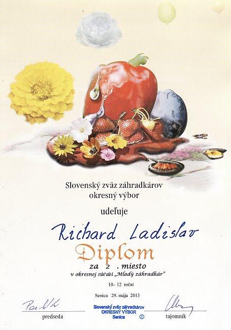 diplom-130529-ladislav.jpg