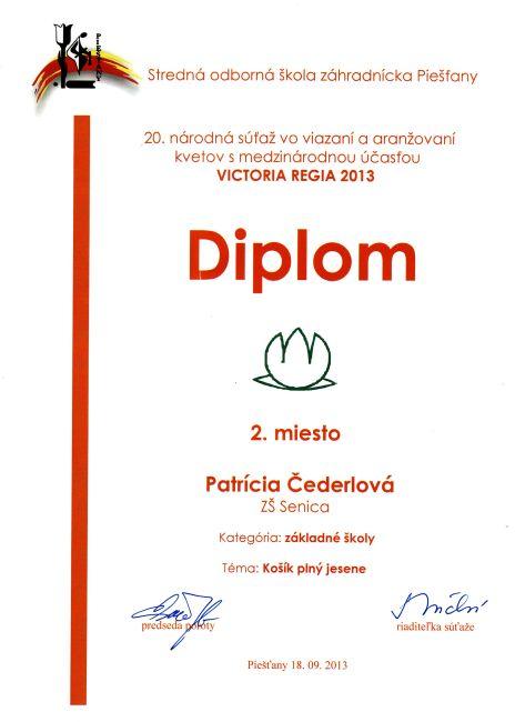 diplom-130918-cederlova-2m-kosik.jpg