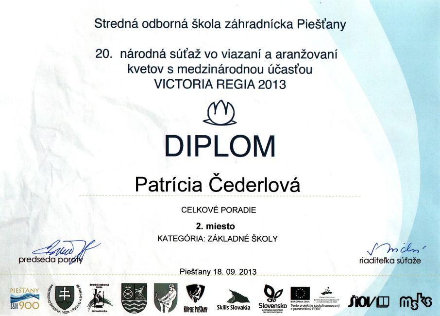 diplom-130918-cederlova-2mcp.jpg