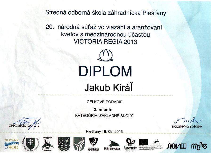 diplom-130918-kiral-3m.jpg